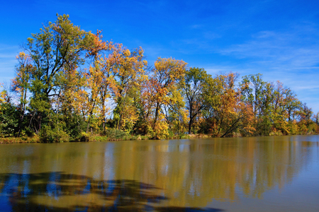 Autumn mood at a pond in the Odra River. Imagens - 111845118