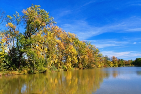 Autumn mood at a pond in the Odra River. Imagens - 111845119