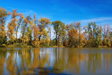 Autumn mood at a pond in the Odra River. Imagens - 111845120
