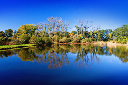 Autumn mood at a pond in the Odra River. Imagens - 111845129