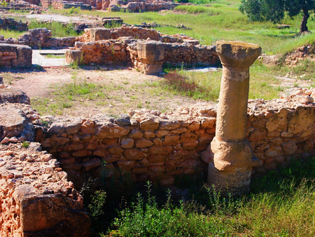 The archaeological site of Hammamet. Imagens - 111845164