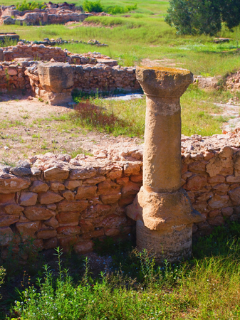The archaeological site of Hammamet. Imagens - 111845173