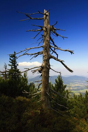 Autumn in the Moravian-Silesian Beskids. Imagens