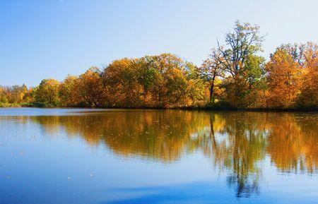 Autumn mood at a pond in the Odra River. Imagens - 133015283