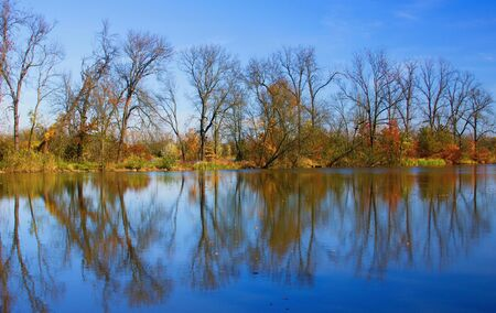 Autumn mood at a pond in the Odra River. Imagens - 133017686