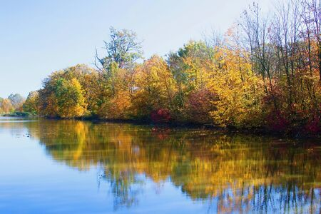 Autumn mood at a pond in the Odra River. Imagens - 133015511