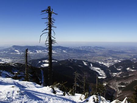 Winter in the Moravian-Silesian Beskids. Imagens - 137221128