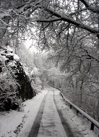 Snowy way photo