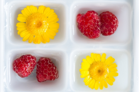 Wildflowers and fruits in ice form ready to be frozen photo