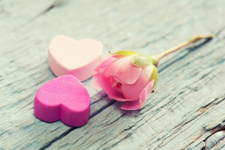 Gentle pink rose and heart on wooden table  Shallow depth of field