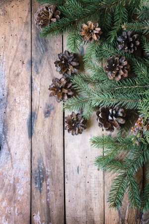 Pine branches and cones Christmas concept