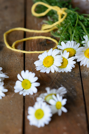 intense flavor: Chamomile (Asteraceae) flowers in wooden table Stock Photo