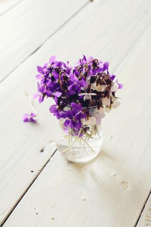 Beautiful fresh violets on white table  Toned image  photo