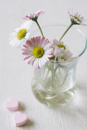 Gentle pastel spring flower and pink cup.