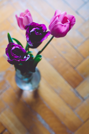 Violet tulips in vase from above