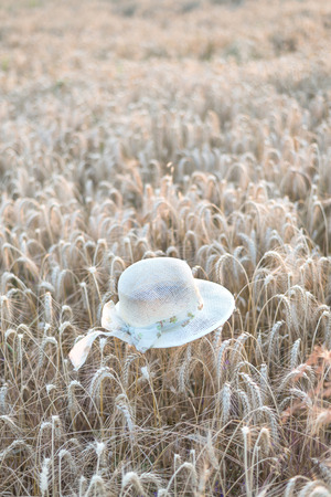 Straw hat on ripe wheat during sunrise Stock Photo