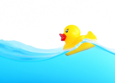 Rubber duckling floating in water Stock Photo