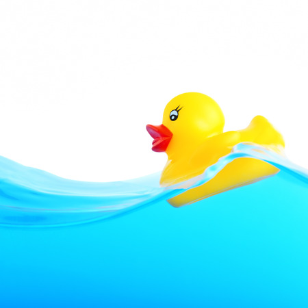Rubber duckling floating in water photo