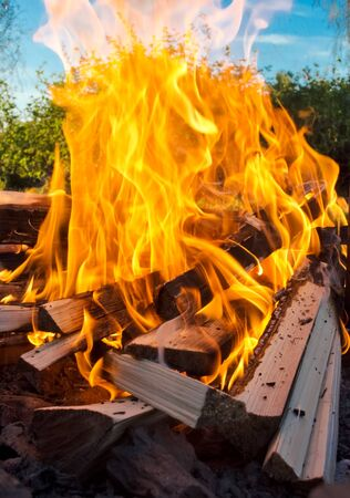 stock photography: Firewood in flame at outdoor stock photography Stock Photo