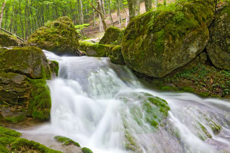 Waterfall on mountain river in green forest photo