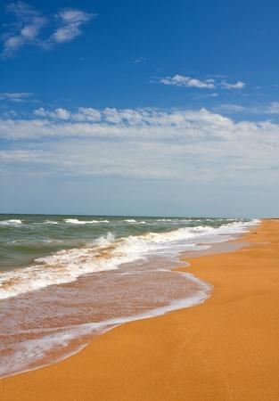 Nice summer landscape on seashore Stock Photo
