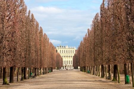 Alley in park on Schonbrunn Palace. Vienna, Austria