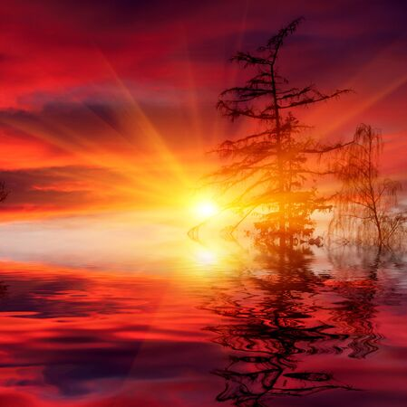 Nice scene with hot sunset over water Stock Photo - 13762581