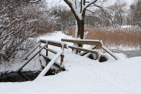 wooden bridge in winter park