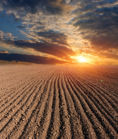sunset over ploughed farm field