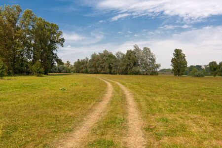 rural road on meadow in nice summer day photo
