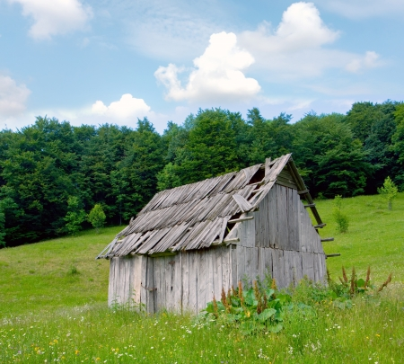 old wooden house in forest meadow photo