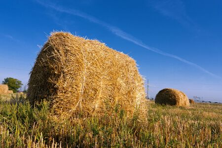 haystack on meadow in autumn time photo