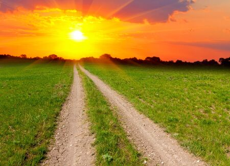 rural road across meadow to sunset photo