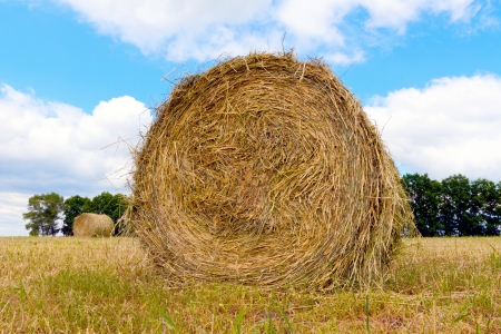 rebelling: haystacks on the filed in cloudy sumer day  Stock Photo