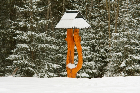 wooden pointer in winter forest photo