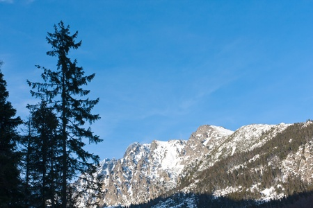 Winter scene in mountains, Tatra Mountains photo