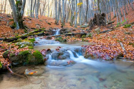 scene witn mountain river in autumn forest photo