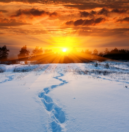 boundless: Scene with trail on snow on sunset background Stock Photo