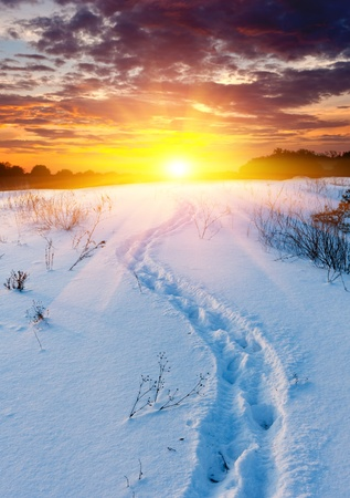 Scene with snow-path in steppe on sunset background  Stock Photo - 17012191
