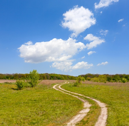 rut: rut road in steppe under nice sky Stock Photo