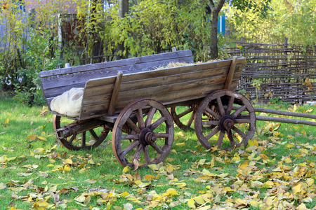 Wooden carriage in autumn garden Stock Photo - 23139480