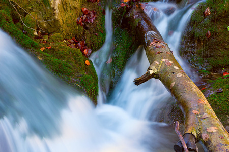 run of mountain stream among green stones and wooden beam photo