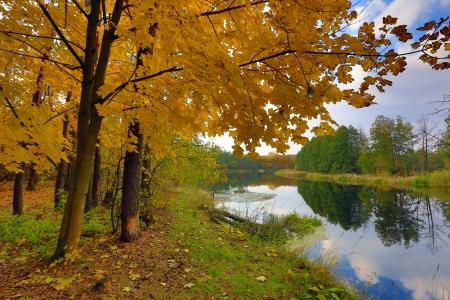Autumn scene on Vorskla river, Ukraine