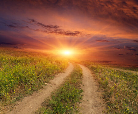 road in steppe on sunset background photo