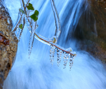 frozen plant  waterfall background