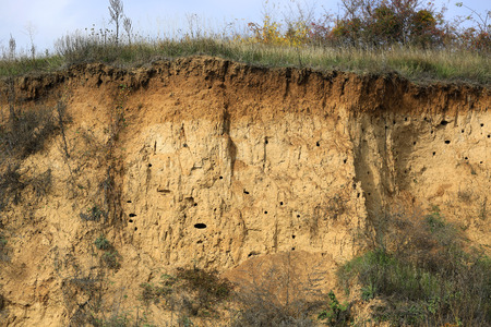 Soil with different layers visible and grass on top