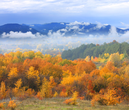 Autumn scene with mountains in fog on background