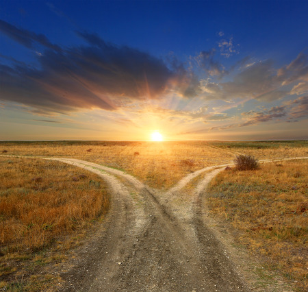 road ahead: Fork roads in steppe on sunset background