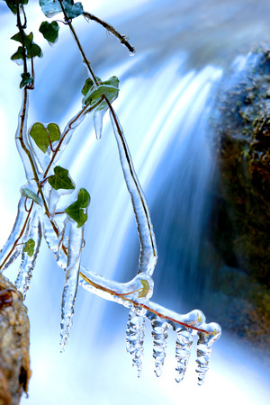 frozen plant on waterfall background