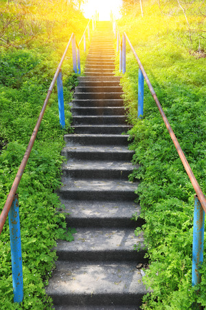 Stairs in spring forest